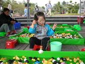 台中豐樂公園釣鴨:DSCN8625