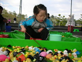 台中豐樂公園釣鴨:DSCN8627