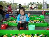 台中豐樂公園釣鴨:DSCN8626