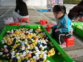 台中豐樂公園釣鴨:DSCN8615