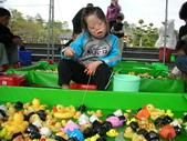 台中豐樂公園釣鴨:DSCN8629