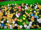 台中豐樂公園釣鴨:DSCN8628