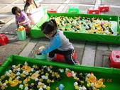 台中豐樂公園釣鴨:DSCN8622