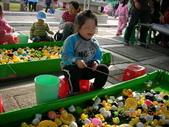 台中豐樂公園釣鴨:DSCN8610