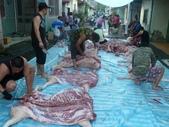 小Aping的傳統結婚儀式-分豬肉:P1040015.JPG