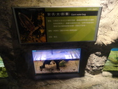 20130107台北基隆一日遊:20130107台北基隆一日遊台北木柵動物園 (58).JPG