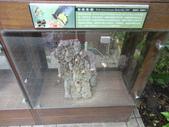 20130107台北基隆一日遊:20130107台北基隆一日遊台北木柵動物園 (45).JPG
