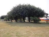 Q寶貝.軒寶貝出遊篇:201241帶Q嫩寶貝到台南林默娘公園走走 (10).JPG