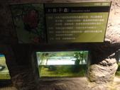 20130107台北基隆一日遊:20130107台北基隆一日遊台北木柵動物園 (60).JPG