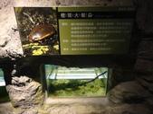20130107台北基隆一日遊:20130107台北基隆一日遊台北木柵動物園 (61).JPG