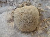 Q寶貝.軒寶貝到外婆家度假:101711寶貝Q在廣豐公園內沙坑玩沙蘋果(1).JPG