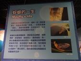 20130107台北基隆一日遊:20130107台北基隆一日遊台北木柵動物園 (74).JPG