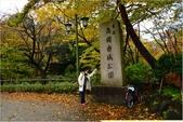 20131121-25日本黑部立山.金澤:DSC_0796.JPG