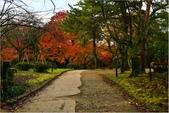 20131121-25日本黑部立山.金澤:DSC_0804.JPG