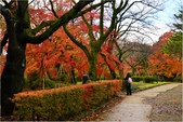 20131121-25日本黑部立山.金澤:DSC_0802.JPG