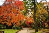 20131121-25日本黑部立山.金澤:DSC_0805.JPG