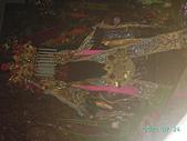 文武廟:PICT1587.JPG