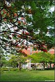 亞洲大學:18.JPG