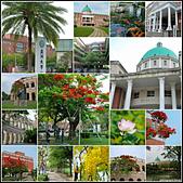 亞洲大學:01.jpg