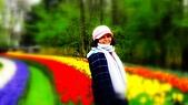 【2017。荷蘭】超極貴婦團之 庫肯霍夫花園Keukenhof 。羊角村:2017-05-292.jpg