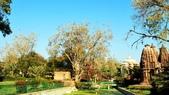 【2016。勇闖印度】白城烏代浦爾。Ranakpur千柱廟,藍城久德浦:久德浦    mandor garden