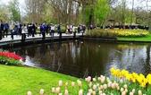 【2017。荷蘭】超極貴婦團之 庫肯霍夫花園Keukenhof 。羊角村:鬱金香花園Keukenhof  holland