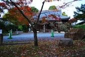 【2010京都】     清水寺‧真如堂‧:
