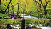 【2013 。東北秘境】青森,奧入瀨溪,酸湯,蔦溫泉,城倉大橋:奧入瀨溪
