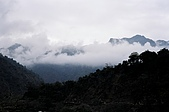 Rishikesh, March 2007:銜雲籠霧