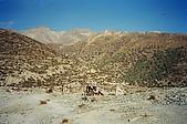 Trekking in Nepal, Dec 2003:Horses--great companions