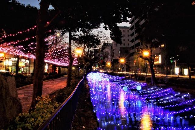 31-01 (1).jpeg - 1071210~14岡山桃太郎親子五日遊~西川綠道公園燈景