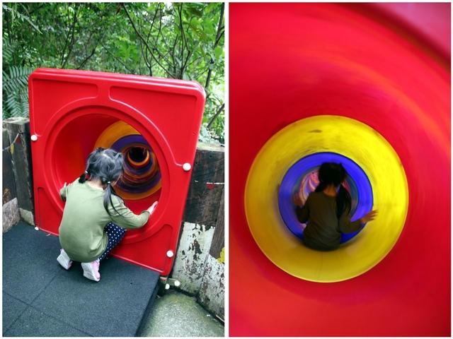 11.jpg - 1051112再訪森林鳥花園