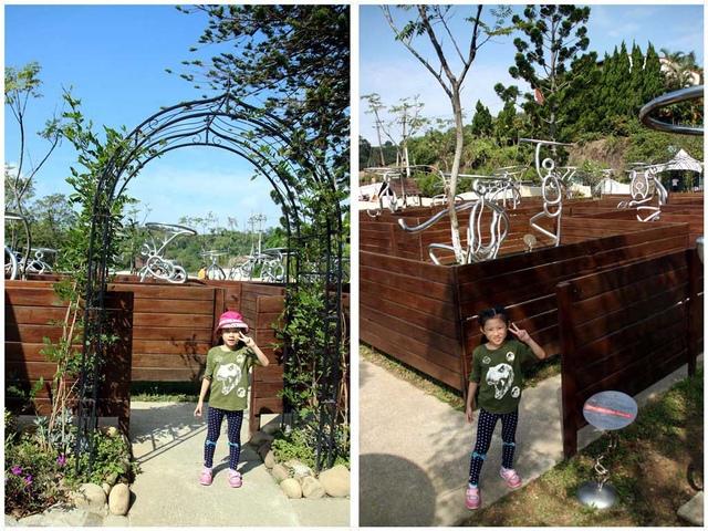 7.jpg - 1051112再訪森林鳥花園