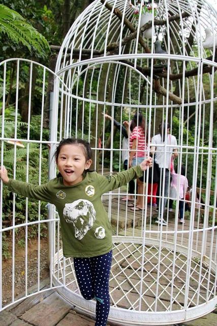 13.JPG - 1051112再訪森林鳥花園