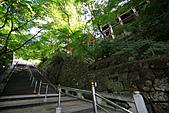 990830日本關西--神戶:DPP_0041.jpg