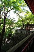 990830日本關西--神戶:DPP_0033.JPG
