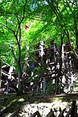990830日本關西--神戶:DPP_0039.jpg