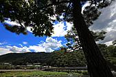 990830日本關西--神戶:DPP_0114.jpg