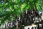990830日本關西--神戶:DPP_0040.jpg