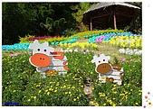 9811台中清境合歡山(下):小瑞士花園