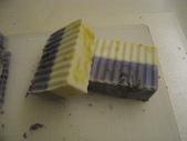 皂:0121宜蘭 002.JPG
