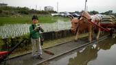 20120228連假--嘉義+台南:SANY0321.JPG