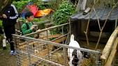 20120228連假--嘉義+台南:SANY0330.JPG