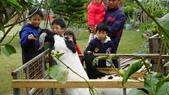 20120228連假--嘉義+台南:SANY0332.JPG