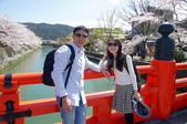 京阪奈櫻花第二辦:京阪2015-0404-104324.JPG