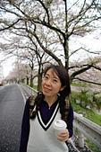 京阪奈櫻花第三瓣:京阪2015-0405-115324.JPG