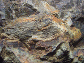 ◎木化石:木化石G0530