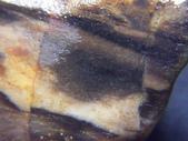 ◎木化石:桃園木化石G2400