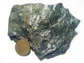 ◎木化石:尖石鄉植物化石_G6509