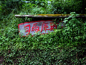 司馬庫斯部落巡禮:IMG_4508a.jpg